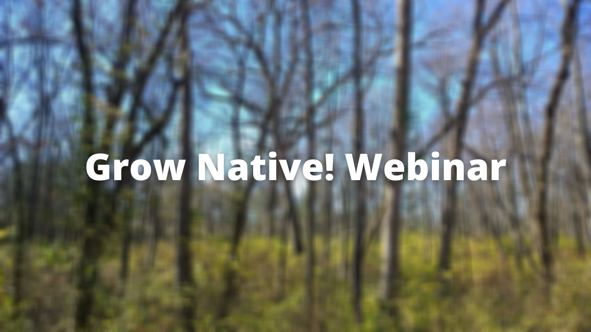 Grow Native Webinar image against background of trees