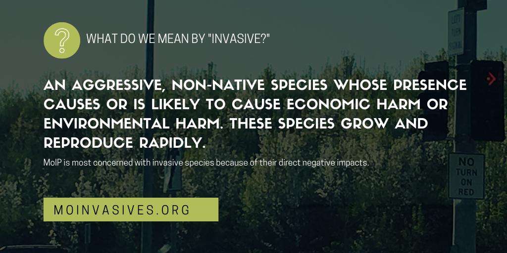 Missouri Invasive Plant Council Definitions: Native, Invasive, Aggressive and Non-native
