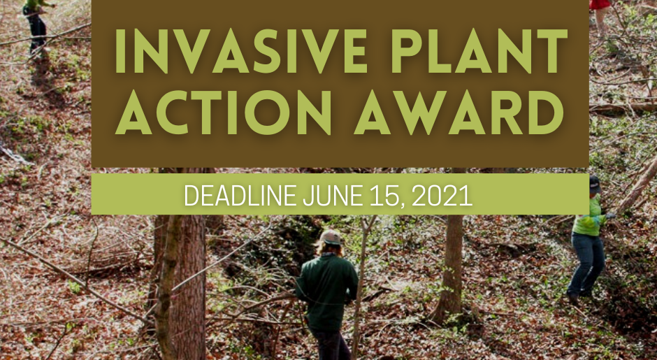 MoIP Invasive Plant Action Awards